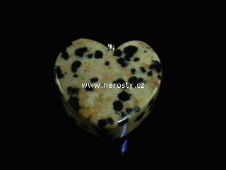 dalmatinit + srdce