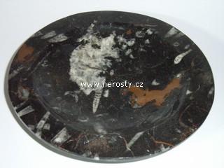 mramor-s-fosiliemi