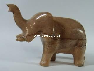 zkamenělý korál, slon