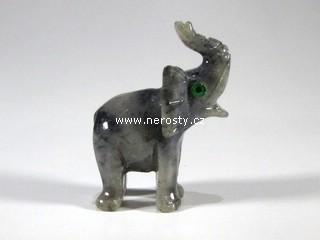 slon, kalcit
