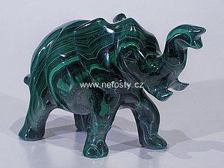 malachit, slon