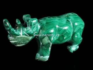 malachit + nosorožec
