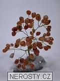karneol,stromeček štěstí